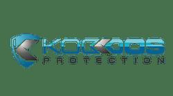 Koddos : best web hosting with anti ddos solution